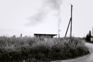 bl000573-Reeds-and-shed-outside-Iraklia